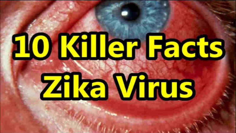 Zika Virus 10 Facts