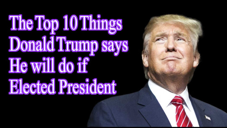 Top 10 Things Trump will do if Elected President