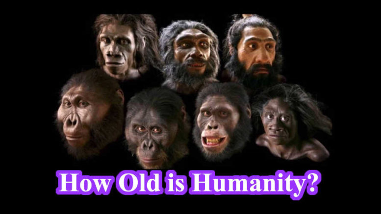 How old is Humanity?